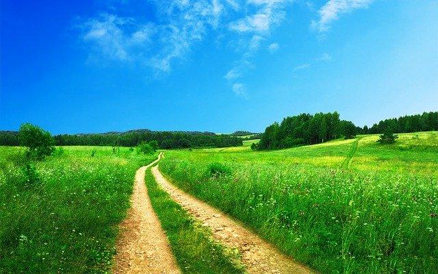 cesta v polích.jpg