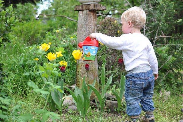 chlapec zalévá květiny